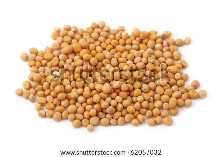 Yellow mustard seeds isolated on white background