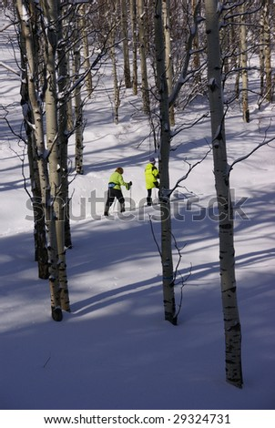 Yellow parka snow shoe hiker, on winter trail with bare aspens,  Cordillera, Colorado, Rocky Mountains