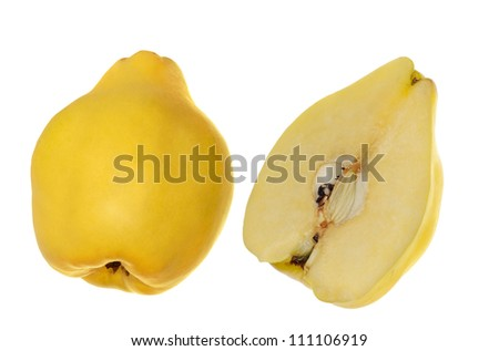 yellow quince isolated on white background