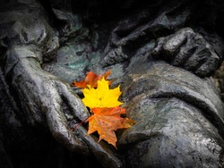 Yellow, red and orange maple leaves in human's statue lap, two hands, hand palms, fist. Rusted bronze.