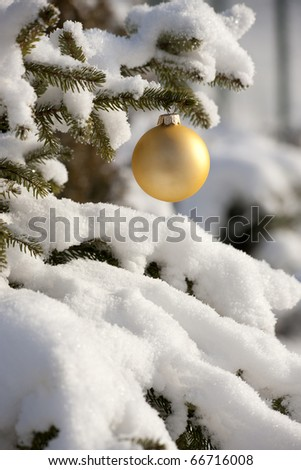 Yellow ribbon on the christmas tree with snow