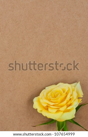 Yellow rose against a background of rough paper with place for text.