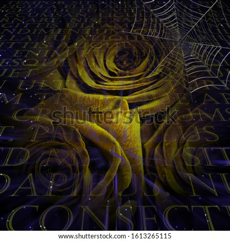 Yellow rose and spider web. 3D rendering