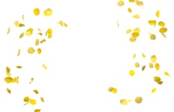 Yellow rose petals fly in a circle. The center free space for Your photos or text. Isolated white background