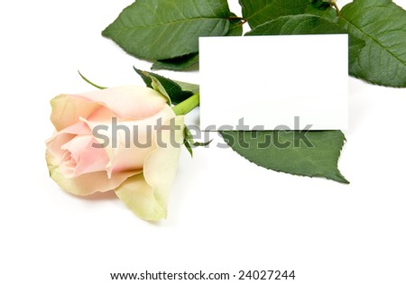 Yellow rose with a blank note