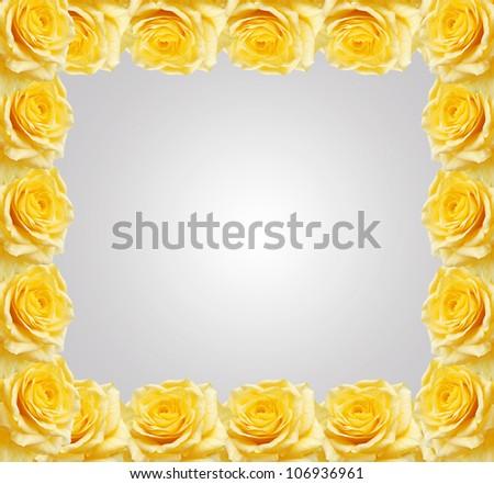 Yellow roses frame