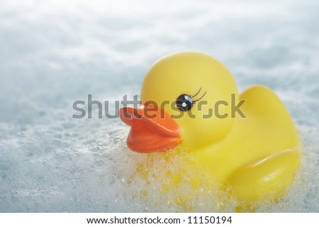 Yellow rubber duck floating in suds in bathtub