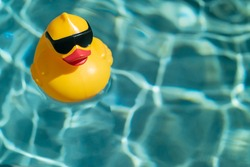 Yellow rubber duck floating on blue water in a pool on a hot summer day, taking a bath and swimming