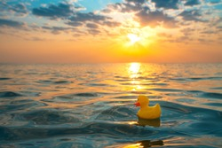 Yellow rubber duck toy floating in sea water. Beautiful sunrise on the beach.