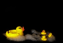 Yellow rubber ducks with foam on a black background with copy space, children's toys in the bathroom