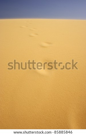 Yellow sand dunes in Mui Ne in South central Vietnam South East Asia