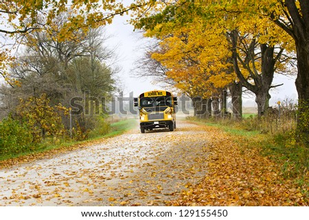 Yellow school bus running on forest road with scattered autumn leaves