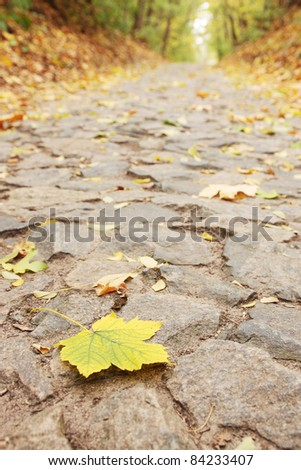 Yellow sheet lies on the road from the stone