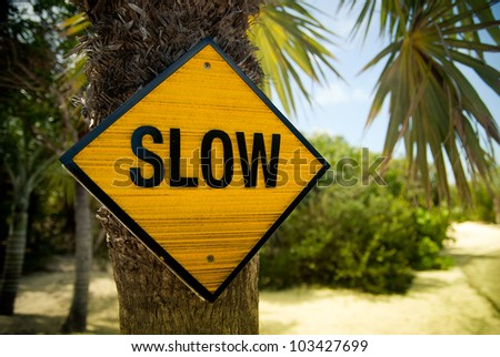 Yellow slow sign on the palm tree
