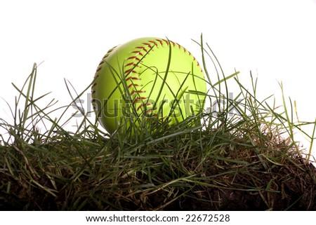 Yellow Softball Image Yellow Softball Sitting in