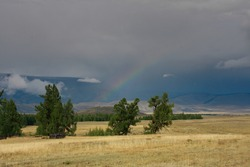 Yellow stepper grass and green trees on background of rainbow, mountains and dark clouds, natural phenomena, hiking, nature of Republic of Altai, Russia