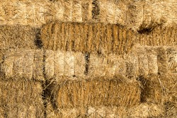 Yellow straw bale wall texture background
