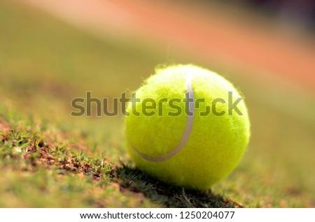 Yellow Tennis Ball #1250204077