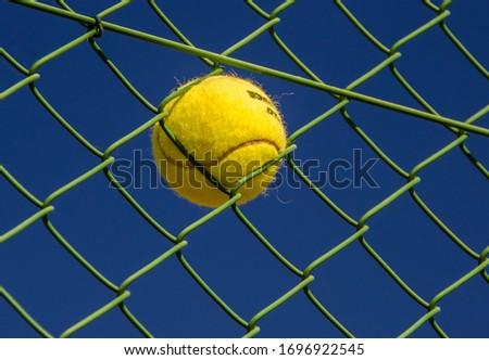 Yellow Tennis Ball Stuck In Green Fence Stock photo ©