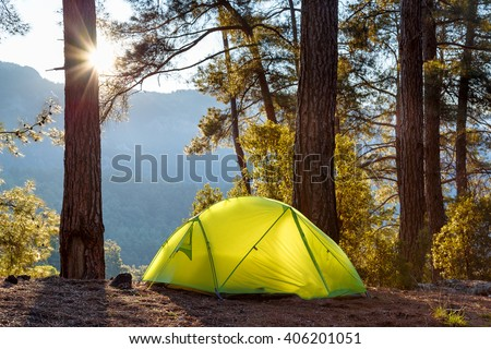 yellow tent in morning forest