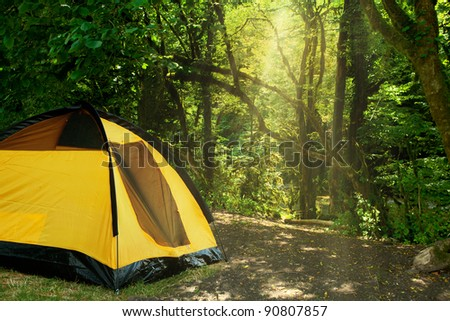 yellow tent in the woods