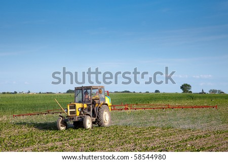 Yellow tractor fertilizing beetroot field in summer day