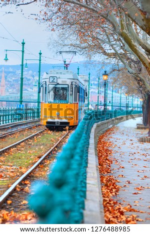 Yellow trams - Ground is covered with red fallen leaves in Budapest, Hungary #1276488985