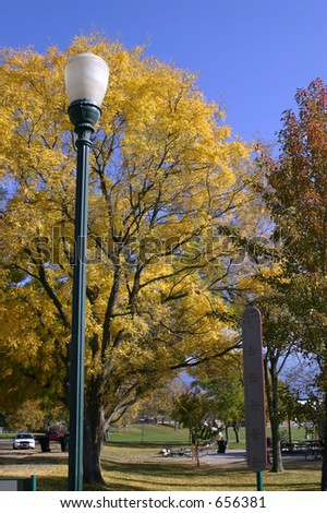 Yellow Trees and the Light Post in the Park