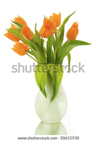 Yellow tulips in a glass vase isolated on a white background. Room for text