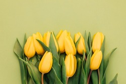 Yellow tulips on a green background. Spring flowers. Tulips from Holland. Sell tulips. Spring mood