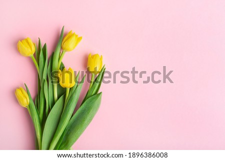 yellow tulips on a pink background, top view, spring bouquet Stock photo ©