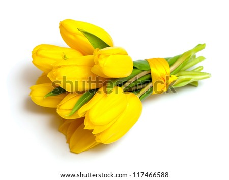 yellow tulips tied up with a ribbon isolated on white background #117466588