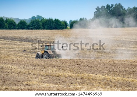Yellow wheeled tractor cultivating the soil on the field after harvesting