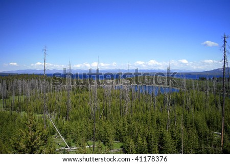Yellowstone Lake and wilderness in Yellowstone National Park