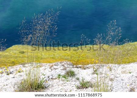 yellowstone national park...