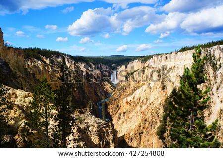 Yellowstone National Park,Wyoming #427254808