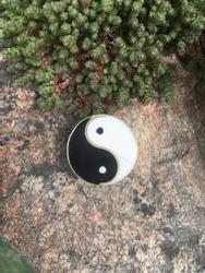 Yin Yang sign, stone, moss