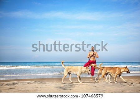 Yoga tree pose by man in red trousers and dogs going in front of him on the beach at ocean background