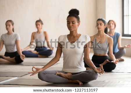 Yogi black woman and diverse group of young sporty people practicing yoga, doing Padmasana exercise, Lotus pose, working out indoor, female students training at club. Well being, wellness concept