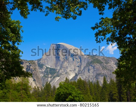 Yosemite Half Dome framed with tree branches