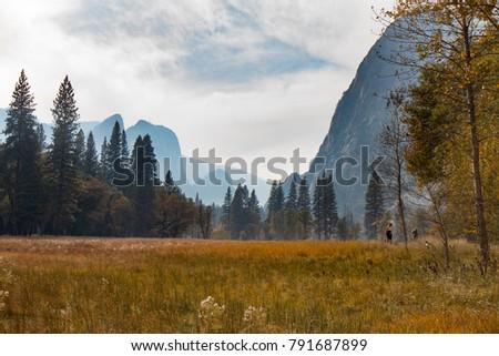 Yosemite valley in California, USA - Shutterstock ID 791687899