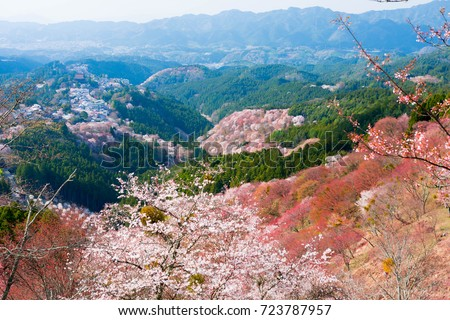 Yoshino mountain in spring ストックフォト ©