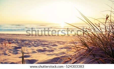 Shutterstock You have arrived at your destination. Beautiful Australian beach scene on the Gold Coast Australia.