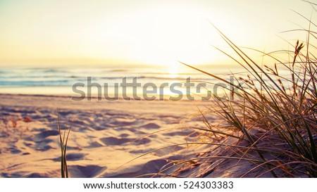 You have arrived at your destination. Beautiful Australian beach scene on the Gold Coast Australia.