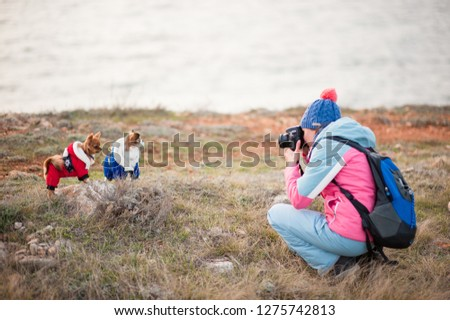 young active woman in wool hat and track suit taking pictures of two little chihuahua pet dogs using camera outdoors in cold weather spring season