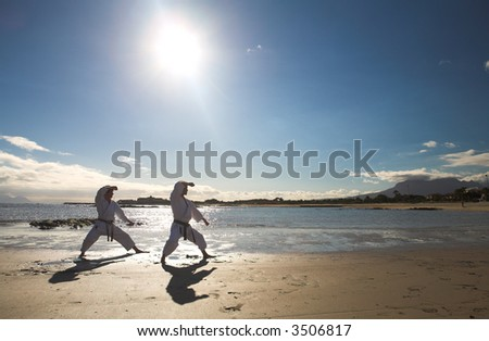 Young adult man with black belt practicing a Kata on the beach on a sunny day