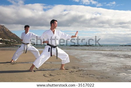Young adult men with black belt practicing a Kata on the beach on a sunny day