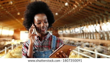 Young African American pretty woman using tablet device and talking on mobile phone in farm stable. Female farmer tapping and scrolling on gadget computer in shed. Girl speaking on cellphone