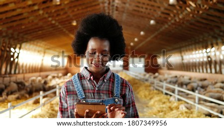Young African American pretty woman using tablet device and walking in farm stable. Female farmer tapping and scrolling on gadget computer in shed. Going inside shed with livestock. Foto stock ©