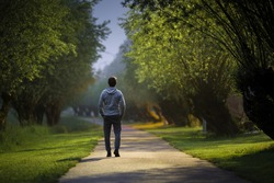 Young alone man slowly walking through alley of trees in warm summer night. Spending time alone in nature. Peaceful atmosphere. Back view.